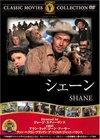 Shane4