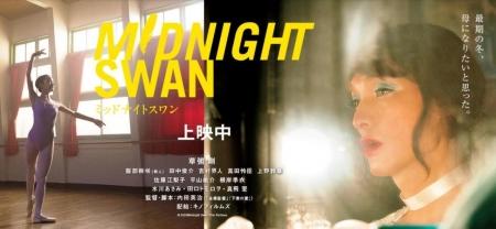 Midnight-swan_20201105120001